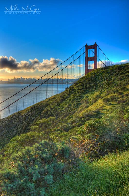 Golden Gate Bridge Grassy Field